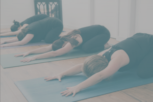 Omaha Yoga Studio